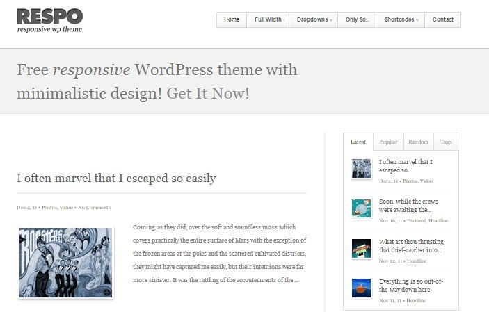 Respo Free WordPress Theme