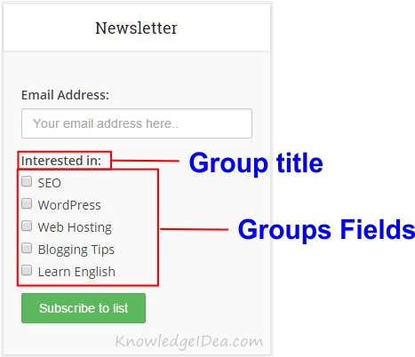 How To Create Groups in MailChimp form