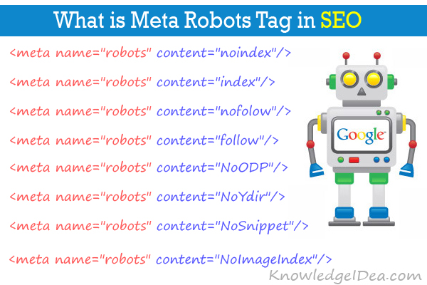 What is Meta Robots Tag in SEO