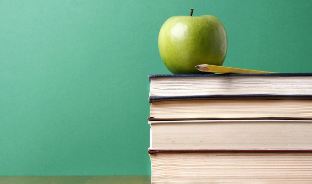 Education System Errors and Remedies
