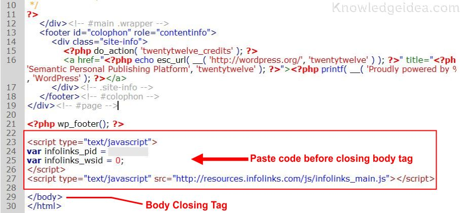 How to Add Infolinks Ads code on website