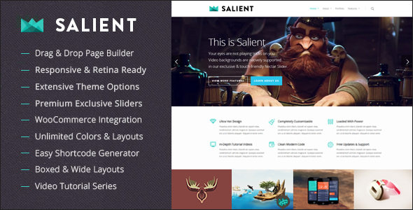 Salient Premium WordPress Themes