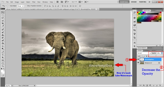 How To Make a Watermark in Photoshop step 3