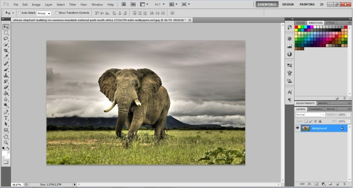 How To Make a Watermark in Photoshop step_1