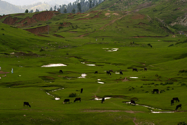 Best Vacation Spots in Pakistan Swat Valley