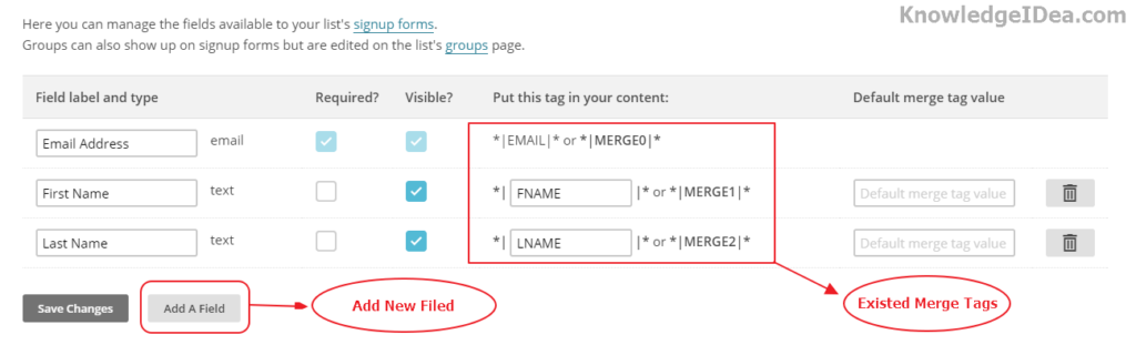 How to Create New Merge Tags in MailChimp Step 4